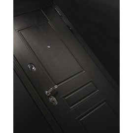 Входная стальная дверь Мегаполис цвет Акация светлая горизонтальная с ударопрочным зеркалом